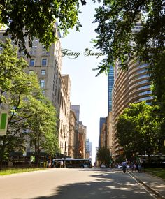 Download this photo of #Manhattan, #central #park for free and use it for your #blog, social network or commercial purpose. ----> http://viid.me/qQd1YX