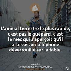 L'animal terrestre le plus rapide, c'est pas le guépard, c'est le mec qui s'aperçoit qu'il a laissé son téléphone déverrouillé sur la table.