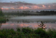 Туман над лесным озером. Северная Карелия.  #Красоты_России #КрасотыРоссии #Россия