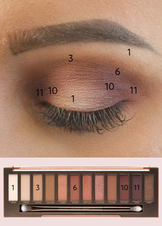 A colour by numbers guide to Urban Decay's best-selling eyeshadow palette