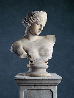Catalogue - Classical Statues & Busts for Hire - Bust of Greek Female Italian Statues, Greek Statues, Buddha Statues, Stone Statues, Aesthetic Statue, Statue Tattoo, Summer Painting, No Bad Days, Sculptures