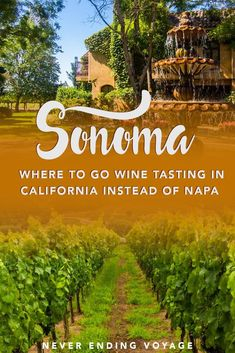 Sonoma is a great alternative to Napa Valley in California if you're looking to travel to different wineries! Here are our top places to go wine-tasting! Sonoma Wineries, Napa Sonoma, Sonoma Wine Tours, Sonoma County, Napa Valley Wineries, Sonoma Wine Country, Virginia Wineries, Sonoma California, California Wine