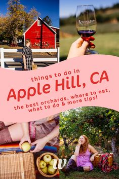 Apple Hill California: Your Guide to Apple Picking, Things To Do & Tasty Desserts! Apple Hill California, California Travel, California Fashion, Sunny California, California Style, Northern California, Christmas Tree Cutting, Stuff To Do, Things To Do