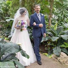 Unique Wedding Venues, Unique Weddings, Bridesmaid Dresses, Wedding Dresses, Conservatory, Wedding Day, Butterfly, Bridesmade Dresses, Bride Dresses