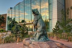 1. Denver Museum of Nature and Science