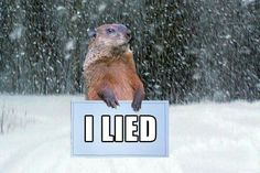 Image result for groundhog lied