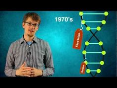 Hank Explains Epigenetics  The SciShow hosts takes you through how epigenetics works and how these  changes may be passed on through generations.