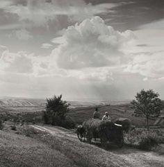 Ferdinand Bučina, bez názvu, z nevydané knihy Vzpomínka na Javorník, do roku 1942 Ferdinand, Country Roads