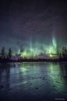 "travelgurus: "" Aurora Borealis over a frozen Alaskan Lake by Phil Gilcrease Follow @travelgurus for the best Tumblr Images """