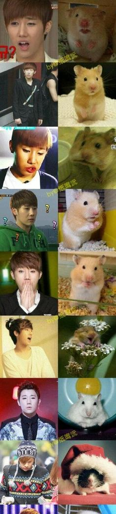 I see no difference. ㅋㅋㅋ #sunggyu #infinite