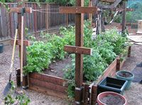Raised beds how-to guide including traits of various building materials.