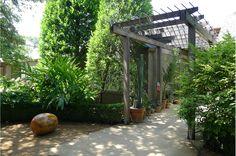 Mark Word Design: Landscape Architecture for Austin, Texas Hotel San Jose Austin, Landscape Architecture, Landscape Design, Lake Flato, Red Sun, Garden Maintenance, Word Design, Architect Design, Present Day