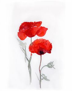Watercolor painting of poppies Art painting watercolor by rakla, $25.00