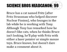 Science Bros Headcanon #99 Bruce has a cat named Fritz (after Fritz Strassman who helped discover Nuclear Fission), who lounges in the lab while he is working with Tony. Although Tony has remarked how he doesn't like cats, when he thinks Bruce isn't looking, he'll play with Fritz with either a laser pointer or simple mouse toys. Bruce knows, but doesn't dare make a comment about it.