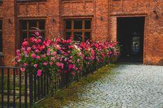 Natura i industrialne otoczenie? Para doskonała! - Inspirowani Naturą Flower Boxes, Flowers, Cities, Urban, Decor, Stop It, Window Boxes, Decoration, Planter Boxes