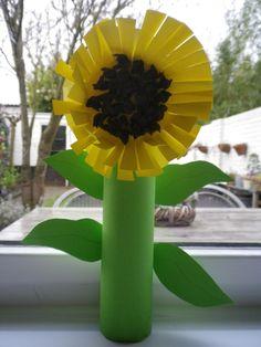 Zonnebloem. Bij Snuffel en de bloem.