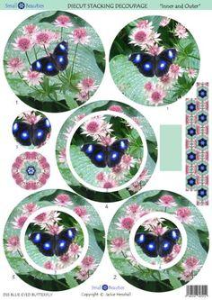 DS5_LRG-Blue Eyes Butterfly.jpg 417×590 piksel