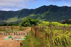 Kauai Hawaii Tourist Attractions - ATV Eco Adventure Tours, Kauai Hiking, Sightseeing & More | Kipu Ranch Adventures
