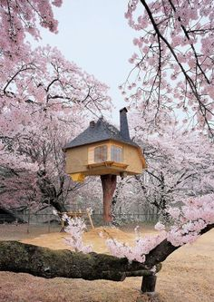 17 Of The Most Amazing Tree Houses In The World (shared via SlingPic)