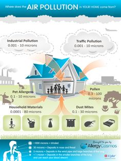 Invest in your health with an air filter Here's some information about indoor pollution and the best air purifiers allergies can be treated with. Environmental Justice, Environmental Science, Air Pollution Facts, Water Pollution, Allergies, Best Indoor Plants, Asthma Symptoms, Home Schooling, Air Purifier