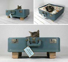 Dale un buen uso a esas maletas que ya no utilizas convirtiéndolas en cómodas camas para tus mascotas.