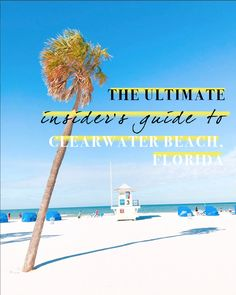 Clearwater Beach will always hold a special place in my heart. From my most recent visit, here's an insider's guide to Clearwater Beach, Florida. Clearwater Beach Florida, Florida Beaches, Sarasota Florida, Sandy Beaches, Florida Vacation Packages, Orlando Travel, Us Destinations, Beach Trip, Beach Travel