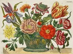 Image result for botanical illustrations public domain