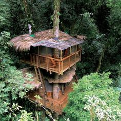 Awesome Treehouses Gallery...just had to post. Puts my idea of a tree house to shame!