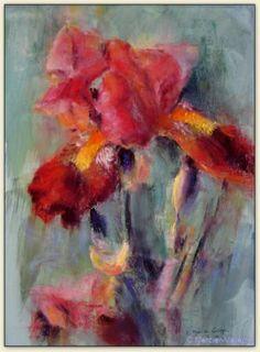 Le bel Iris - pastel -