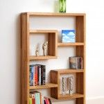 Contemporary  Bookshelves Concept