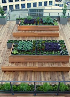 Custom-built steel planters nestle into raised wooden beds that double as bench seating.