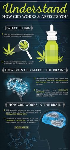 Learn More - How CBD Works and Affects You