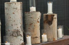 Birch Stumps and Candle Holders