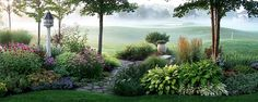"""Beautiful flower """"island"""" garden planted in the middle of a lawn"""