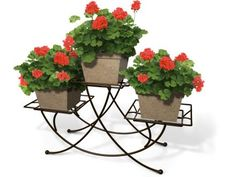 Plants are beautiful on their own, but these super stands take them to the next level.