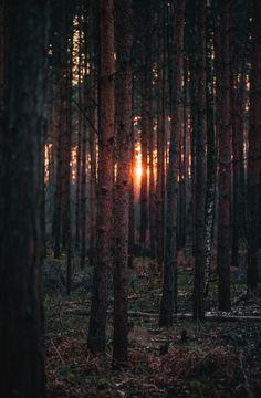 Die Sonne geht unter, besser Zeit, nach Hause zu gehen