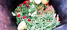 Tackling the Food Waste Crisis  Two women who have devoted their lives to building sustainable food systems