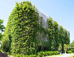 Vo Trong Nghia's Babylon Hotel in Vietnam is wrapped in a flourishing veil of plants and vines
