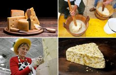 20 things you didn't know about cheese