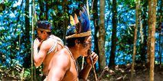 Relatório aponta vantagens econômicas para a regularização das terras indígenas.