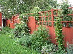 Avskärmning och spaljé. Porch Garden, Outdoor Garden Decor, Garden Cottage, Outdoor Gardens, Garden Stakes, Garden Fencing, Garden Paths, Red Houses, Garden Privacy