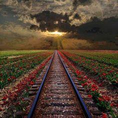 Demiryolundan gün batımı manzarası, Romanya...