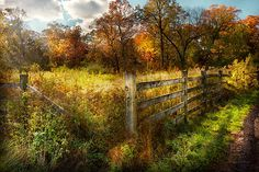 $37 Mike Savad - The Autumn years of your life refer to the fact that your old enough to be broken, but not quite old enough to be dead. This fence best represents that, it sits here around in this broken state and no one really cares. It adds a bit of charm and rustic Autumnal flavor. And currently serves the use of holding in that large area of weeds, in which it's doing a fine job. #savad #fence #country #rural #rustic