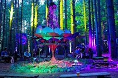 electronic music festivals forest - Google Search