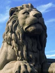 I kinda like this face of the lion