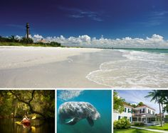 Top 10 Must See and Dos in Fort Myers & Sanibel, Florida
