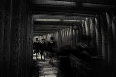 walking through the 1000 tori gates by swapnil deshpande