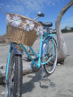 happiness is a turquoise beach crusier
