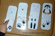 Bookmarklet Details - Little Learners: Polar Animals Match-up - Memetales Animal Footprints, Artic Animals, Penguins And Polar Bears, Polo Norte, Animal Tracks, Preschool Themes, Preschool Education, Polar Animals Preschool Crafts, Animal Activities