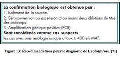 Confirmation BIOLOGIQUE de la leptospirose, une zoonose transmissible du rat à l'homme - Juif Marylène - 2011